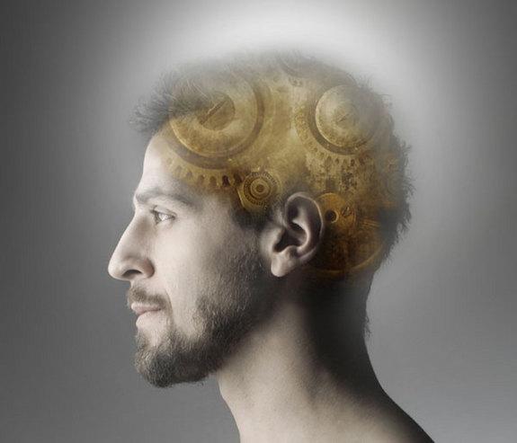 brain-memory-100831-02