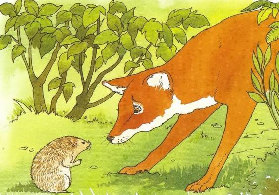 fox_and_sage_hedgehog
